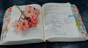 Rediscover the Beauty of the Bible
