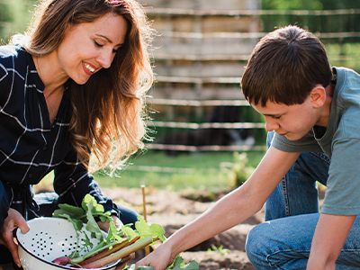 You Can Grow a Year's Worth of Food for Your Family – Get a Free Planning Guide Today!